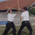 Démonstrations d'arts martiaux (style de Kung-Fu de la mante religieuse) par Julien CORBET et Thai-Nhat-Quan Romain NGUYEN lors de la fête du centre aéré de Savières en 2013.