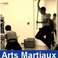 Ouverture du concert «musiques du monde» le 04/07/13 avec une prestation d'arts martiaux (duo mains nues/bâtons) par Julien CORBET et Thai-Nhat-Quan Romain NGUYEN